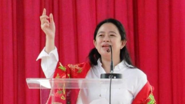 Menko PMK Puan Maharani (Foto Dok Industry.co.id)