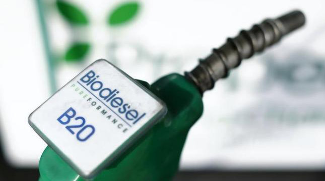 Biodiesel (Ilustrasi)