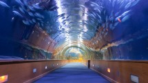 The Virtual Aquarium is being replaced as Checkpoint at Dubai International Airport (Ist)