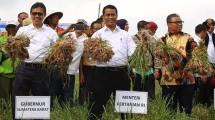 Menteri Pertanian RI Andi Amran Sulaiman melakukan kunjungan kerja di Nagari Rimbo Data