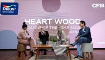 Heart Wood as the color of the year 2018 version of Akzonobel
