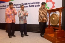 Minister of Industry Airlangga Hartarto accompanied by Director General of Chemical Industry Textile and Aneka (IKTA) Achmad Sigit Dwiwahjono and Director of Upstream Chemical Industries Muhammad Khayam
