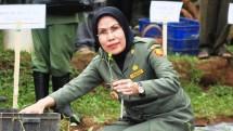 Bupati Serang Ratu Tatu Chasanah (Dok Industry.co.id)
