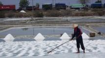 Salt Farmer