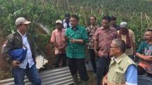 Direktur Jenderal Hortikultura Kementerian Pertanian (Kementan) Wajib Tanam Importir Bawang Putih Tetap Lanjut (Foto: Wiyanto/Industry.co.id)