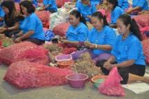 Indonesia Kembali Ekspor Bawang Merah ke Singapura (Foto Dok Industry.co.id)