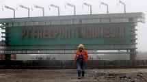 PT Freeport Indonesia. (Ist)