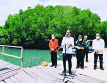 President Jokowi inspects mangrove forest at Ngurah Rai Grand Forest Park in Bali province (08/10) (Photo by: Presidential Secretariat's Press, Media, and Information Bureau/Laily)